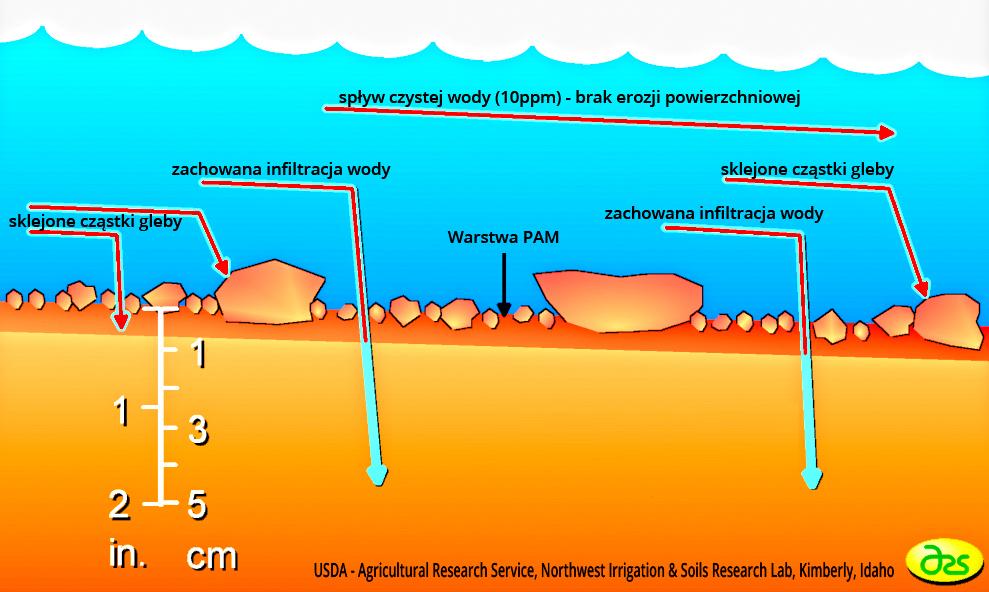 Klej  do hydrosiewu PAM flokuluje cząstki gleby i zapobiega erozji deszczowej.